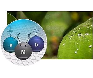 фотосинтез и солнечные батареи